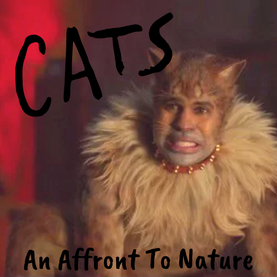Cats: An Affront To Nature