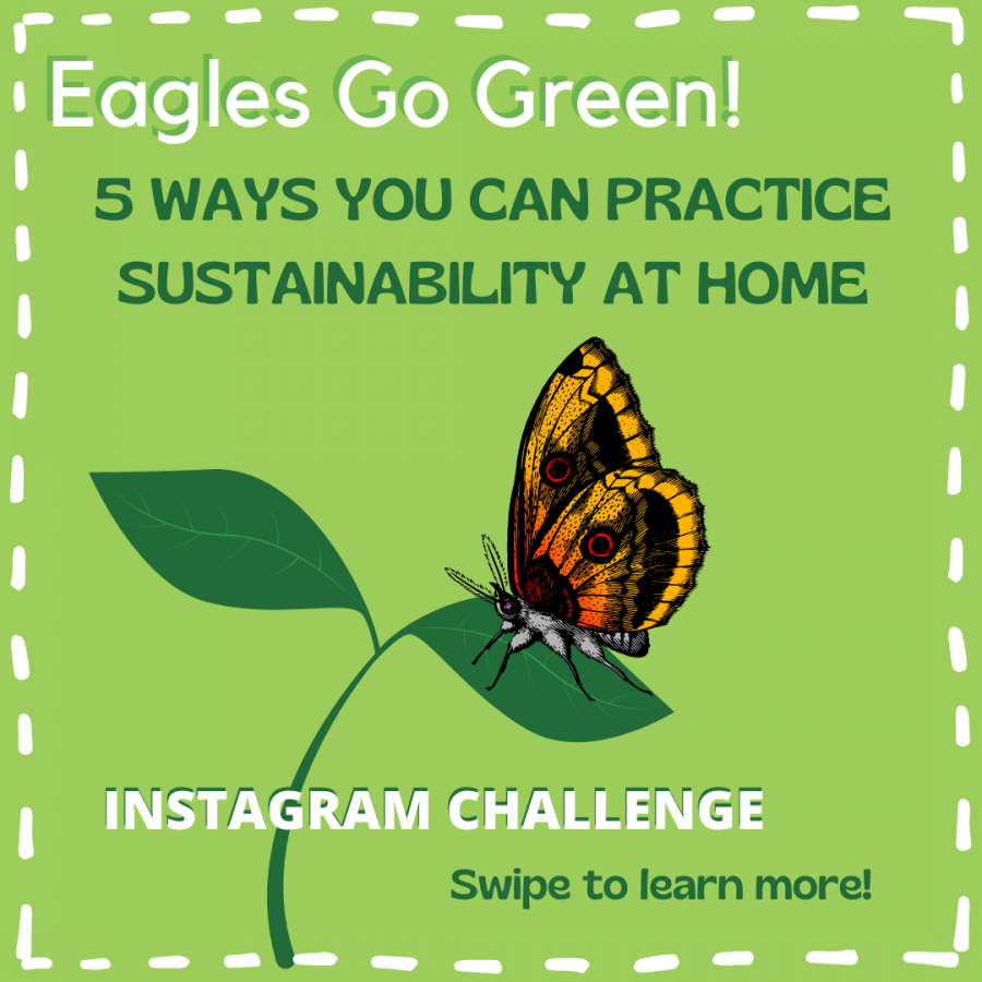 Eagles Go Green: 5 Ways to Practice Sustainability at Home