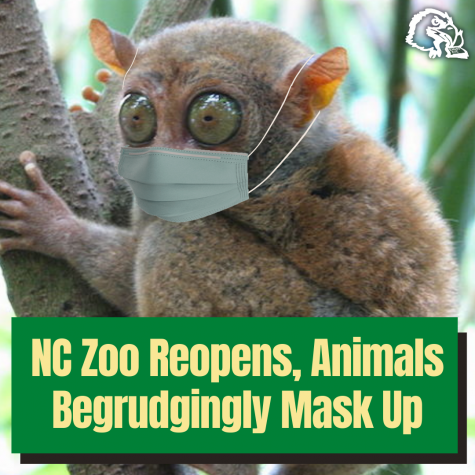 NC Zoo Reopens, Animals Begrudgingly Mask Up