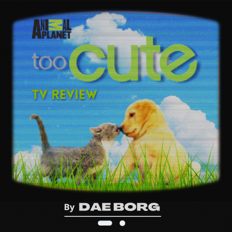 Too Cute, The Cutest Show You Will Ever Watch: A TV Review