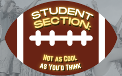 Student Section: Not as Cool as Youd Think